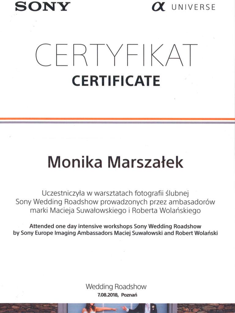certyfikat (3 of 12)
