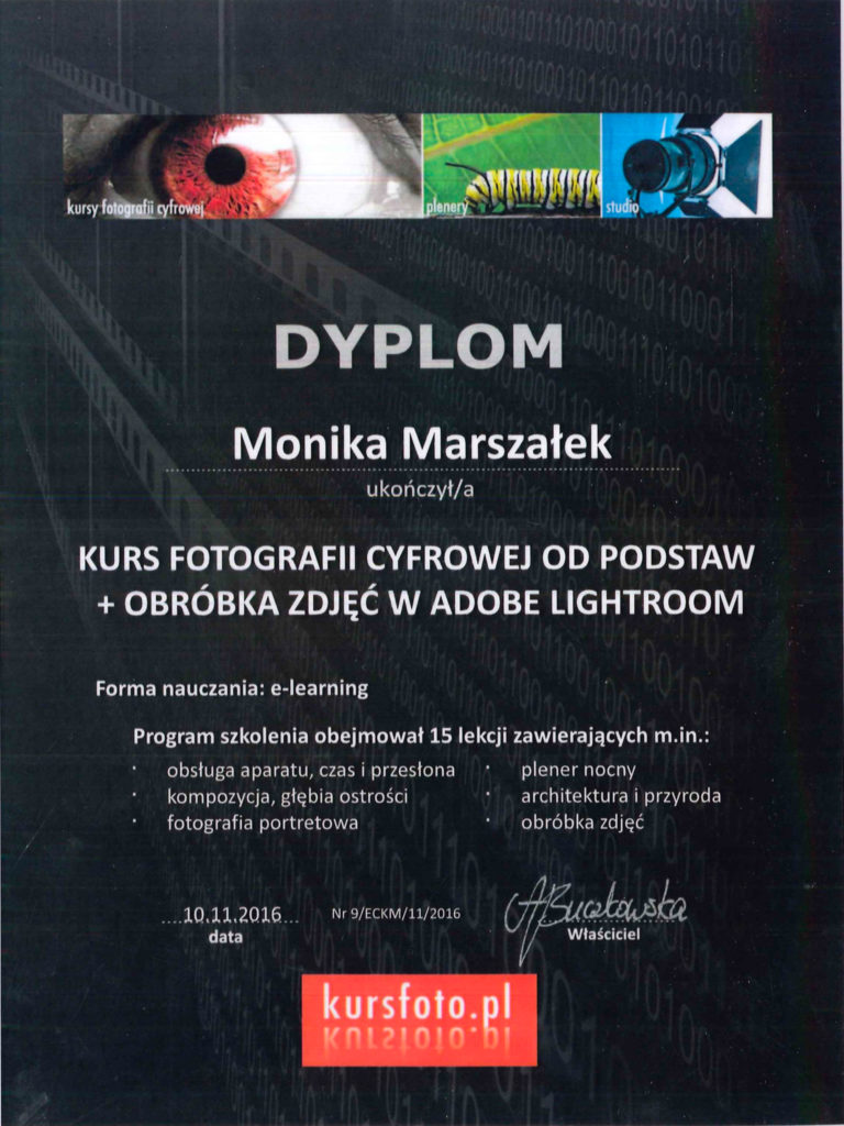 certyfikat (5 of 12)